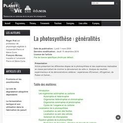 La photosynthèse : généralités