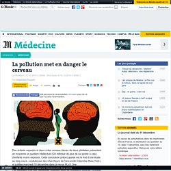 La pollution met en danger le cerveau