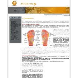 La réflexologie plantaire, c'est le pied