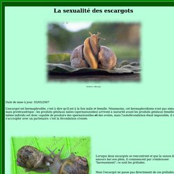 La reproduction des escargots