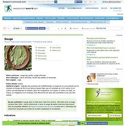 La sauge dans le traitement de la pharyngite