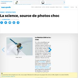 La science, source de photos choc
