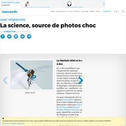 La science, source de photos choc