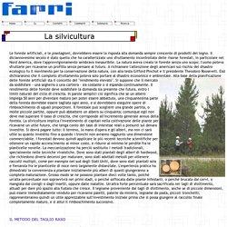La silvicultura