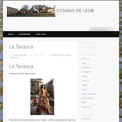 COSINAS DE LEON