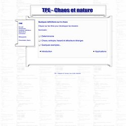 La Théorie Du Chaos (TPE)