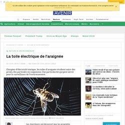 La toile électrique de l'araignée