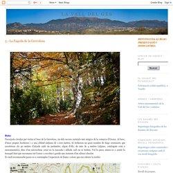 La Vall del Ges: 5.- La Fageda de la Grevolosa