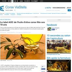 FRANCE 3 CORSE 24/02/14 Le label AOC de l'huile d'olive corse fête ses 10 ans.