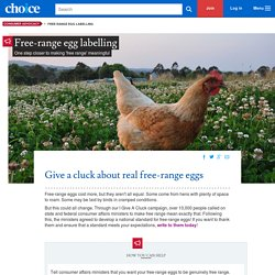 Free-range egg labelling - consumer advocacy - CHOICE