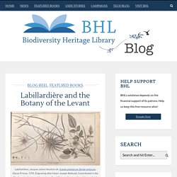 Labillardière and the Botany of the Levant