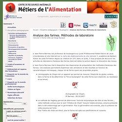 Analyse des farines. Méthodes de laboratoire - Métiers de l'Alimentation