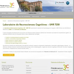 Laboratoire de Neurosciences Cognitives - UMR 7291