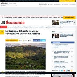 Le Rwanda, laboratoire de la «révolution verte» en Afrique