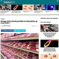 Manger de la viande produite en laboratoire, ça vous tente ? - SciencePost