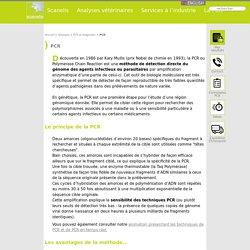 PCR - Scanelis - Laboratoire d'analyses vétérinaires