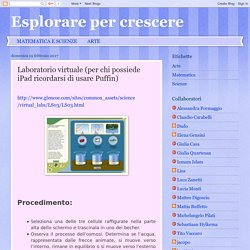 Laboratorio virtuale (per chi possiede iPad ricordarsi di usare Puffin)