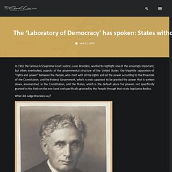 """The 'Laboratory of Democracy' has spoken: States without stay at home orders and should COVID-19 be renamed the """"Acela Virus"""""""