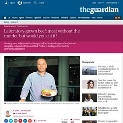Laboratory-grown beef: meat without the murder, but would you eat it?
