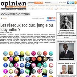 Les réseaux sociaux, jungle ou labyrinthe ?