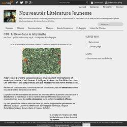 CDI : L'élève dans le labyrinthe - LivresAdos : Nouveautés Littérature Jeunesse