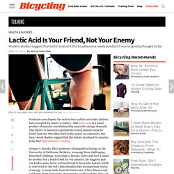 Lactic Acid Is Your Friend, Not Your Enemy