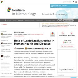 Role of Lactobacillus reuteri in Human Health and Diseases