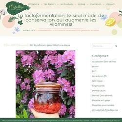 La lactofermentation, le seul mode de conservation qui augmente les vitamines! - l'Ortiellerie la fabrique à nature