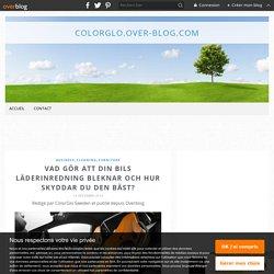 Vad Gör Att Din Bils Läderinredning Bleknar Och Hur Skyddar Du Den Bäst? - colorglo.over-blog.com