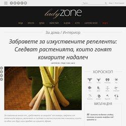 Забравете за изкуствените репеленти: Следват растенията, които гонят комарите надалеч - LadyZone.bg
