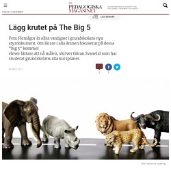 Lägg krutet på The Big 5