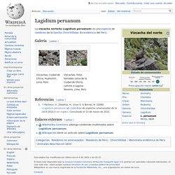 Lagidium peruanum