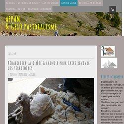 Laine des Alpes Maritimes - Site de l'APPAM