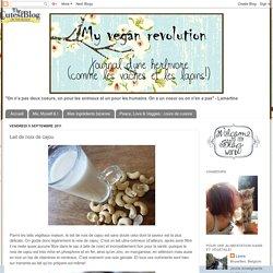 My Vegan Revolution: Lait de noix de cajou