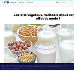 Les laits végétaux, véritable atout santé ou effet de mode ?