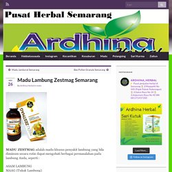 Madu Lambung Zestmag Semarang – Toko Herbal Semarang