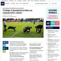 Tutkija: Lämmittelyn idea on ymmärretty väärin - Liikunta - Hyvinvointi - Helsingin Sanomat
