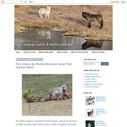 Fact Check: Do Wolves Decimate Game That Hunters Want?