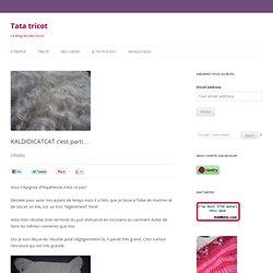 Lancement du KAL (Knit Along) DIDICATCAT, pull oversize en mohair