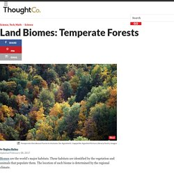 Land Biomes: Temperate Forests