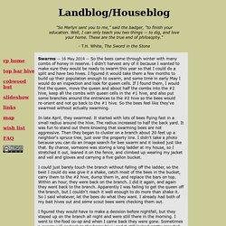 Landblog/Houseblog