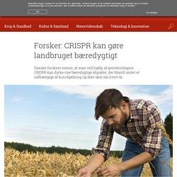 Forsker: CRISPR kan gøre landbruget bæredygtigt