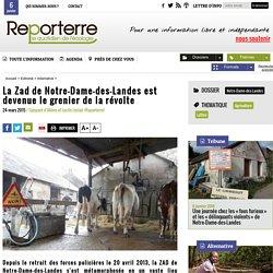 La Zad de Notre-Dame-des-Landes est devenue le grenier de la révolte