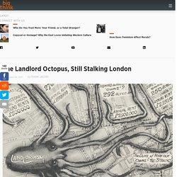 The Landlord Octopus, Still Stalking London