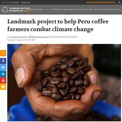 Landmark project to help Peru coffee farmers combat climate ...
