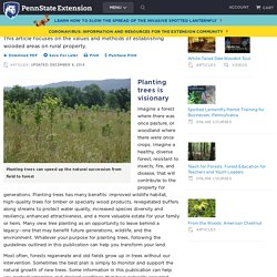 Forest Landowners Guide to Tree Planting Success