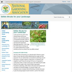 Edible Shrubs for your Landscape (National Gardening Association)