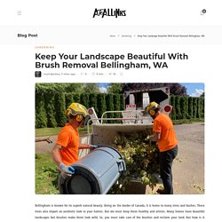 Keep Your Landscape Beautiful With Brush Removal Bellingham, WA