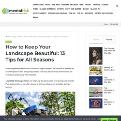 How to Keep Your Landscape Beautiful: 13 Tips for All Seasons – Mental Itch