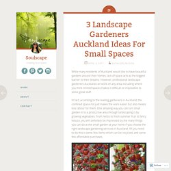 3 Landscape Gardeners Auckland Ideas For Small Spaces